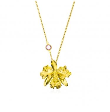 Dây chuyền hoa lan Cattleya Tháng 10